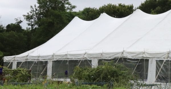 Tent Wall Pole or Frame Clear